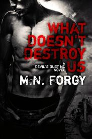 What Doesn't Destroy Us (Devil's Dust MC #1) review on www.bxtchesbeblogging.com