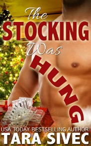 The Stocking Was Hung (The Holiday Series, Book #1) by Tara Sivec | Review on www.bxtchesbeblogging.com